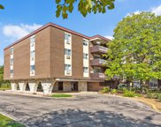 1301 South Finley Road Unit 317, Lombard image