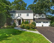 39 Squirrel Hill  Road, East Hills image