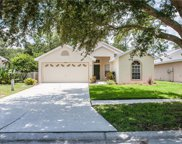 4532 Wild Plum Lane, Lutz image