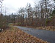 LT 65 Tia Lane, Blairsville image