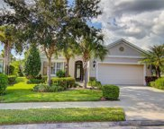 11638 Old Cypress Cove, Parrish image