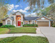 17312 Oak Ledge Drive, Lutz image