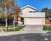 4390 N Marsh Elder Ct, Concord image