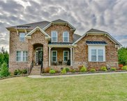 16524  Governors Club Court, Charlotte image