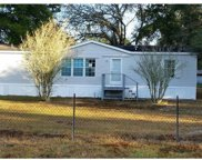 30313 Clearview Drive, Wesley Chapel image