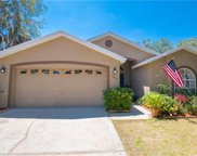 6804 Silver Branch Court, Tampa image