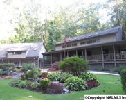 2116 Signal Point Road, Guntersville image