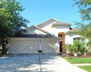 7303 Guilford Pine Lane, Apollo Beach image