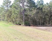 125 Ct Rd, Dunnellon image
