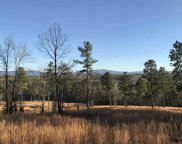 Lot 12 County Road 754, Riceville image