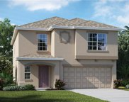 11110 Hudson Hills Lane, Riverview image