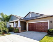 11035 Little Blue Heron Drive, Riverview image