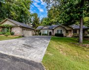 163 Cheeskogili Way, Loudon image