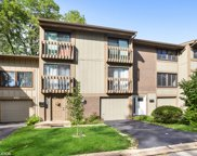 456 E Woodfield Trail, Roselle image