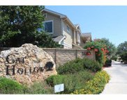16100 Great Oaks Dr Unit 3801, Round Rock image
