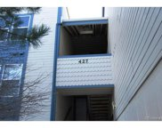 427 South Memphis Way Unit 305B, Aurora image