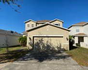 10912 Golden Silence Drive, Riverview image