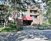 460 Raintree Court Unit 1J, Glen Ellyn image