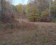 Hwy 441, Wilsonville image