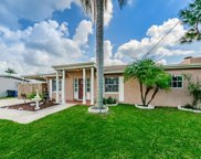4917 Stolls Avenue, Tampa image