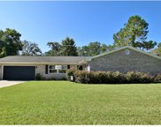 1105 Lady Guinevere Drive, Valrico image