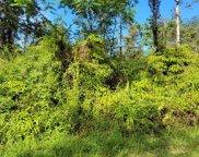GINGER PL, PAHOA image