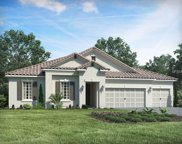 13323 Saw Palm Creek Trail, Bradenton image