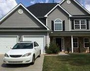 3884  Parkers Fry Road, Fort Mill image