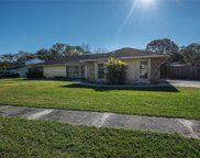 606 Speck Court, Tampa image