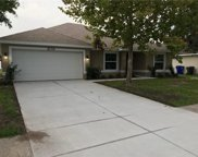 2130 Fawn Meadow Circle, St Cloud image