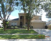 2350 Walnut Heights Road, Apopka image