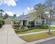 12010 San Chaliford Court, Tampa image