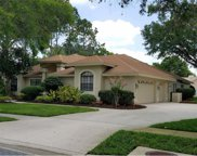 17301 Carriage Way, Odessa image