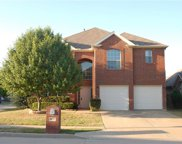 4556 Dragonfly, Fort Worth image