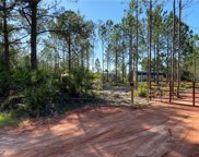 6442 Oil Well Road, Clermont image