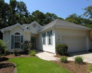 39 Hunters Green Lane, Pawleys Island image