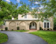 13207 Pinetree Lake  Drive, Chesterfield image