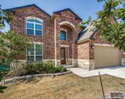 12530 Red Maple Way, San Antonio image