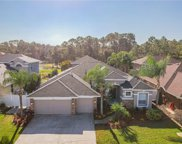 12908 Castlemaine Drive, Tampa image