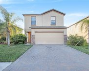 20014 Satin Leaf Avenue, Tampa image
