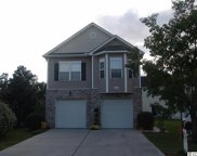 1201 Painted Tree Ln., North Myrtle Beach image