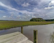 4528 Carriage House Way Way, Ravenel image