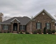17219 Shakes Creek Dr, Fisherville image