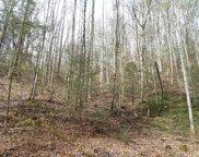 +-17 Acres Lower Rinehart Road Rd, Dandridge image