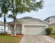 7742 Carriage Pointe Drive, Gibsonton image