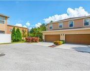8625 Andalucia Field Drive, Temple Terrace image