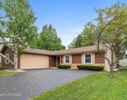 510 Ginger Trail, Lake Zurich image