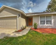 15156 Lost Lake Lane, Lithia image