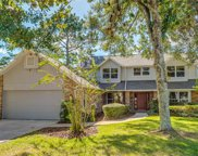 4705 Swansneck Place, Winter Springs image