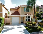 11225 Secret Woods Dr, Cooper City image